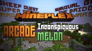 mineplex arcade e01 inconspicuous melon