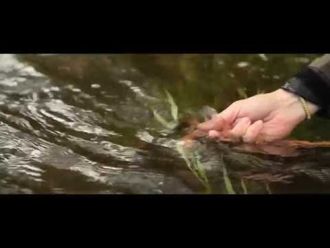 Fly Fishing With Hardy