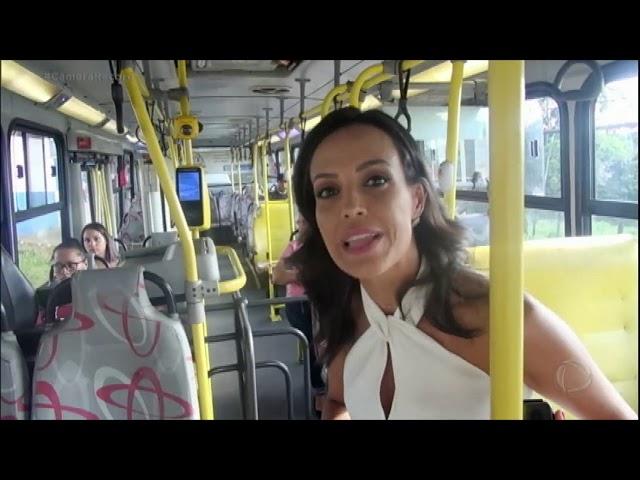 Moradores de Diadema sofrem com infestação de barata no transporte público