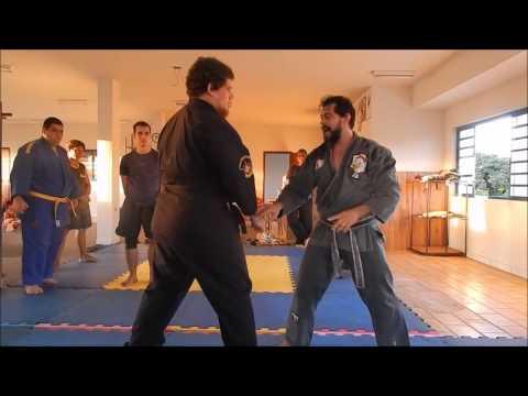 Seminario Kenpo Karate 2017