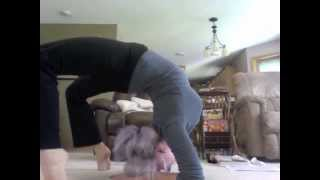 Beginning Contortion Training