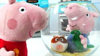 Детские игрушки - Свинка Пеппа онлайн - Поход в зоомагазин
