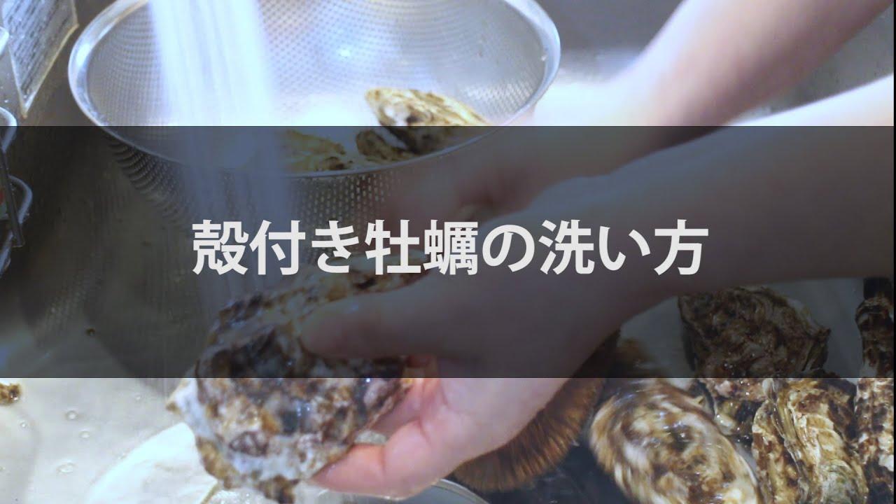 牡蠣 洗い 方 【みんなが作ってる】 牡蠣 洗い方
