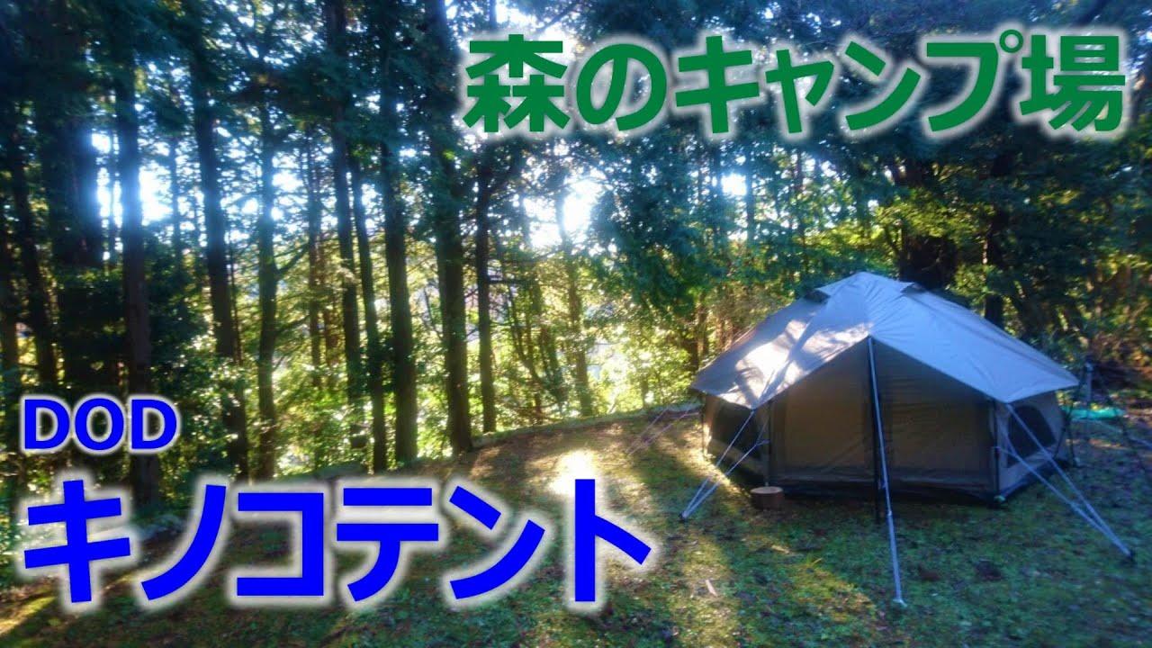 dod キノコ テント
