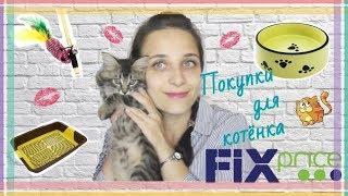 ПОКУПКИ для КОТЕНКА в FIX PRICE / ФИКС ПРАЙС