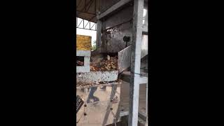 Rompe mazorca de cacao Pinhalense Perú