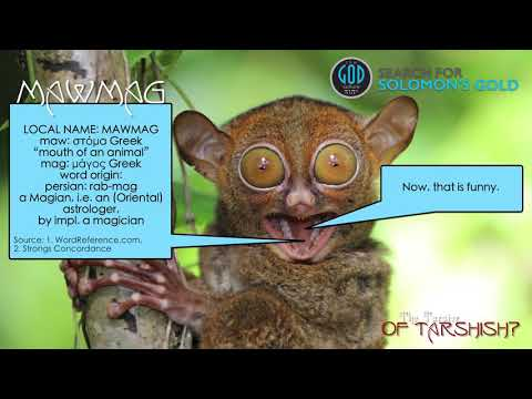Solomon's Gold Series Extra- Tarsier of Tarshish (The Smallest Primate of the Philippines)  by TGC