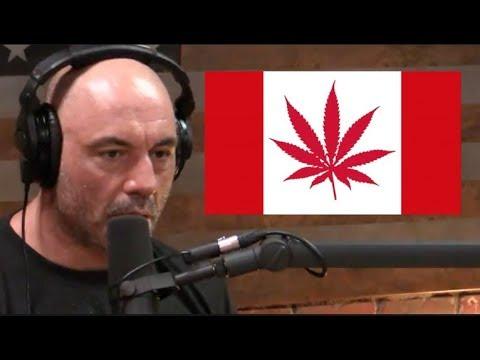Joe Rogan on Canada Legalizing Marijuana