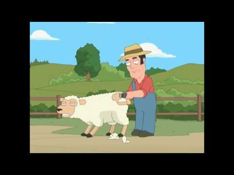 GAY HORNY SHEEP uncensored... from YouTube · Duration:  1 minutes 58 seconds