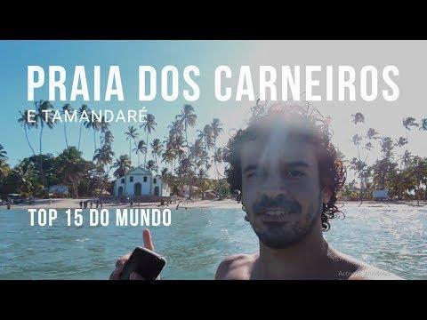 A FANTÁSTICA PRAIA DOS CARNEIROS e as praias de TAMANDARÉ