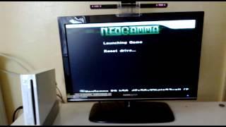 Nintendo  wii compatibilità  webcam per Your Shape