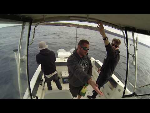 Eden King Fish NSW Mowarry Point