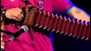Tiago Neto Paulo Fragoso Musica Popular Portuguesa, Concertinas, desgarradas YouTube
