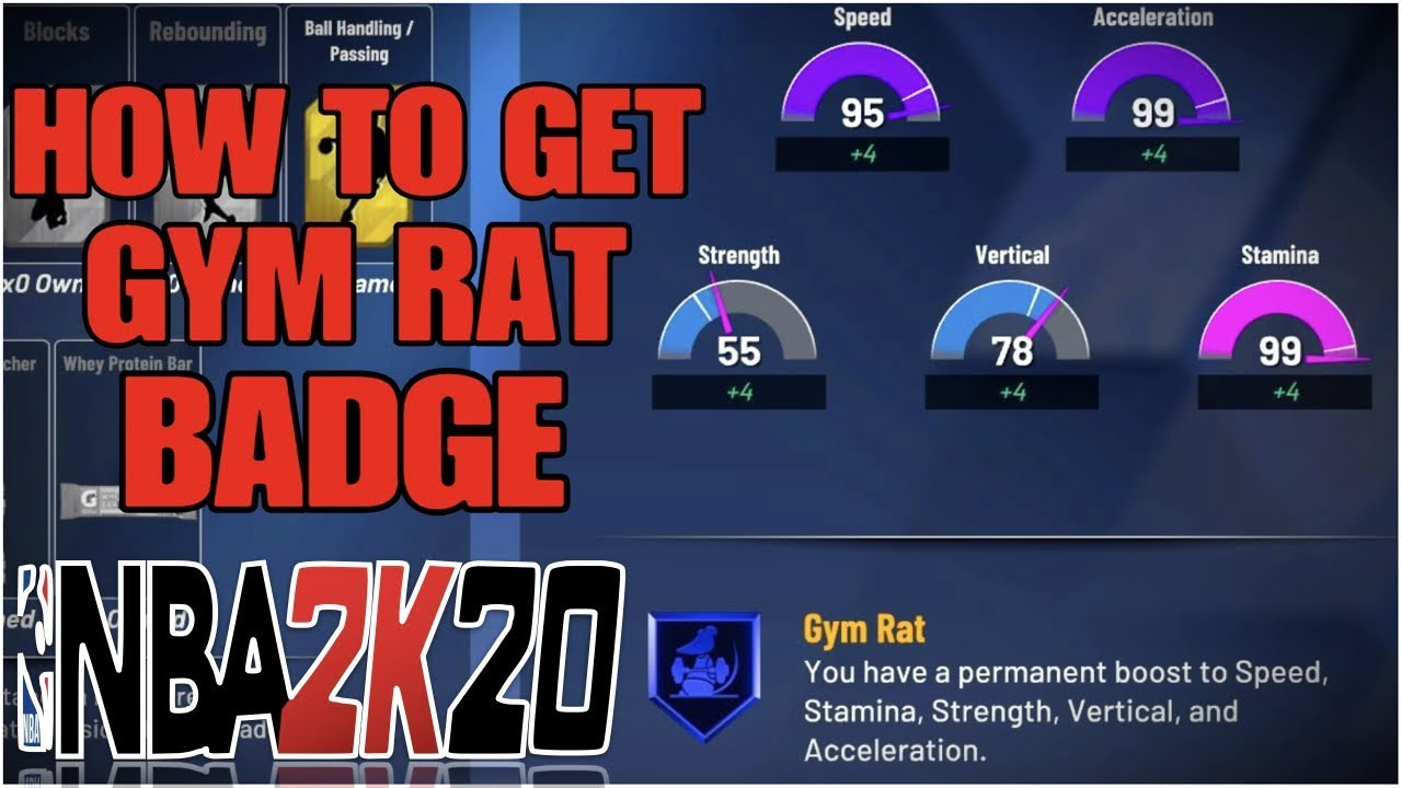 Gym what is rat a Gym rat