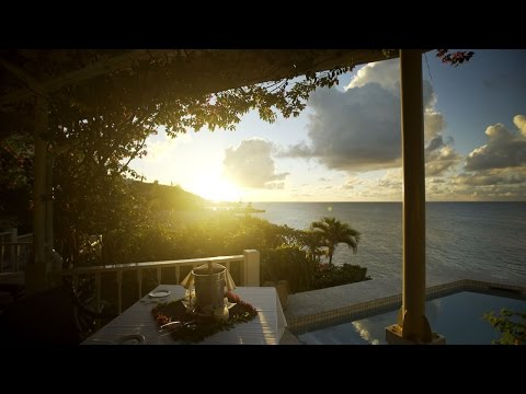 Blue Waters & The Cove Suites - Blue Bay Travel Top Picks