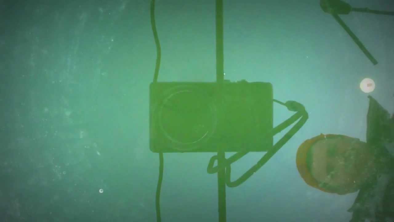 ловля карпа на технопланктон видео