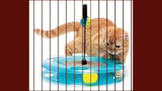 игрушки lps кошки купить