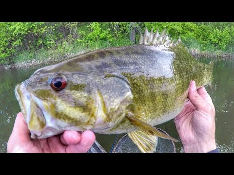 Kayak Fishing Smallmouth Bass On Beds