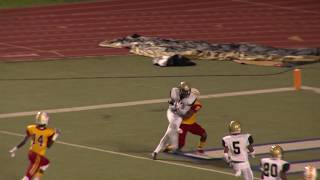 Week 7 - North Forest Bulldogs at Yates Lions