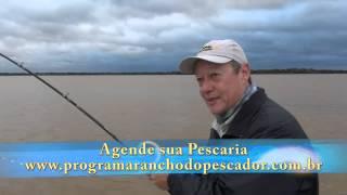 PINTADO GIGANTE NO RIO PARANÁ - bloco 2