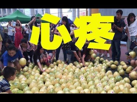 【宇宙大新闻】37 男生摆999个柚子表白 结果被围观群众抢光