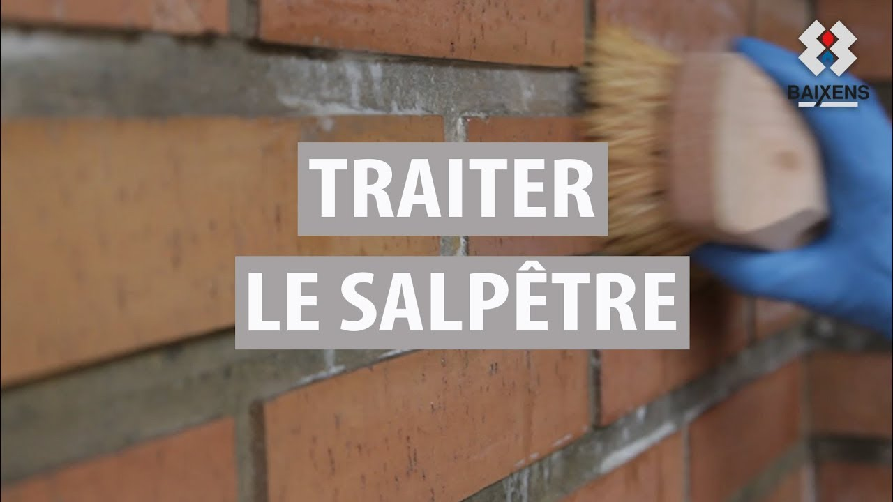 traiter le salp tre youtube