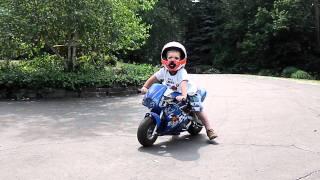 2 year-old on Razor pocket rocket