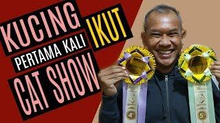 Cat Show Indonesia 2019