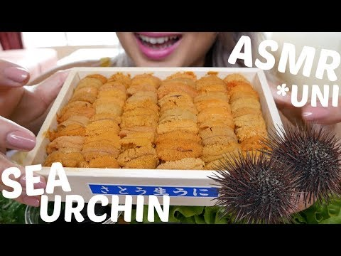 Sea Urchin *UNI | ASMR *No Talking Eating Sounds | N.E Let's Eat