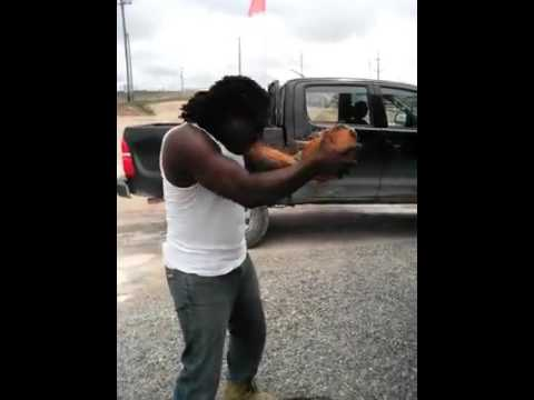 MAN PEELING COCONUT WITH HIS TEETH! (SHOCKING) (MUST WATCH) IN GUYANA