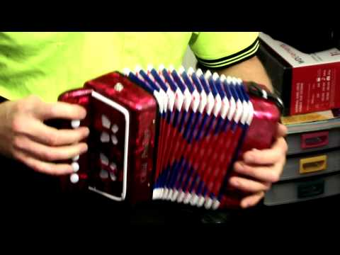 Music! Music! Music!  Toy Accordion Child Prodigy