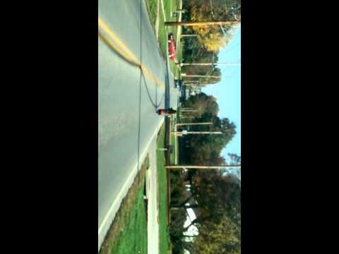 Amazing Pitbull rides moped