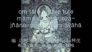 White Tara mantra多罗菩萨白度母心咒, 度母長咒Whitetara Mantra