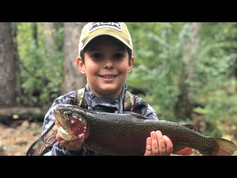 Trout Fishing And Camping ::::: Stokes State Forest 2018