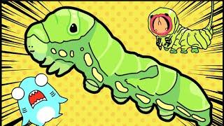 蛾と蝶々の冒険アニメ!昆虫と幼虫についてサメニンと学ぼう!