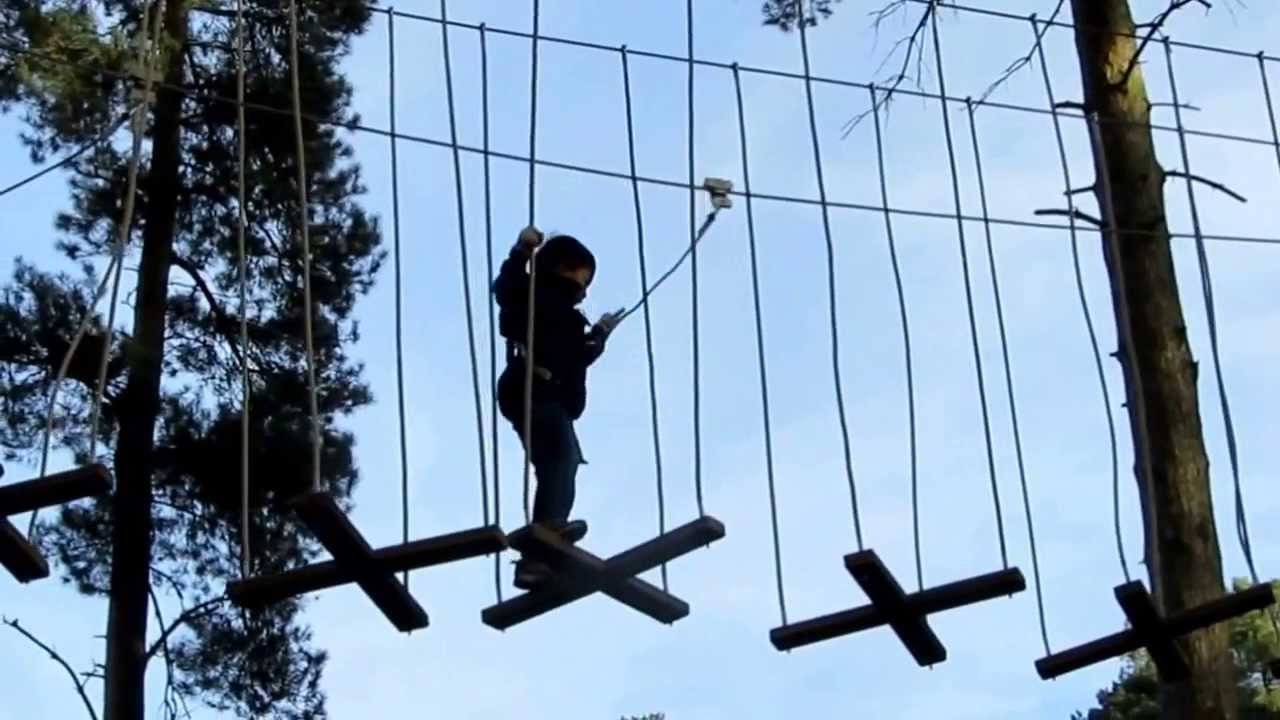 Go Ape Tree Top Junior Adventure Cannock Chase Youtube