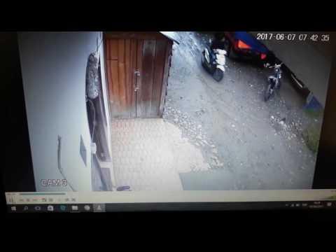Pencuri di rantepao terekam CCTV berhasil mengambil 1 hp smartphone seharga Rp 2,5jt
