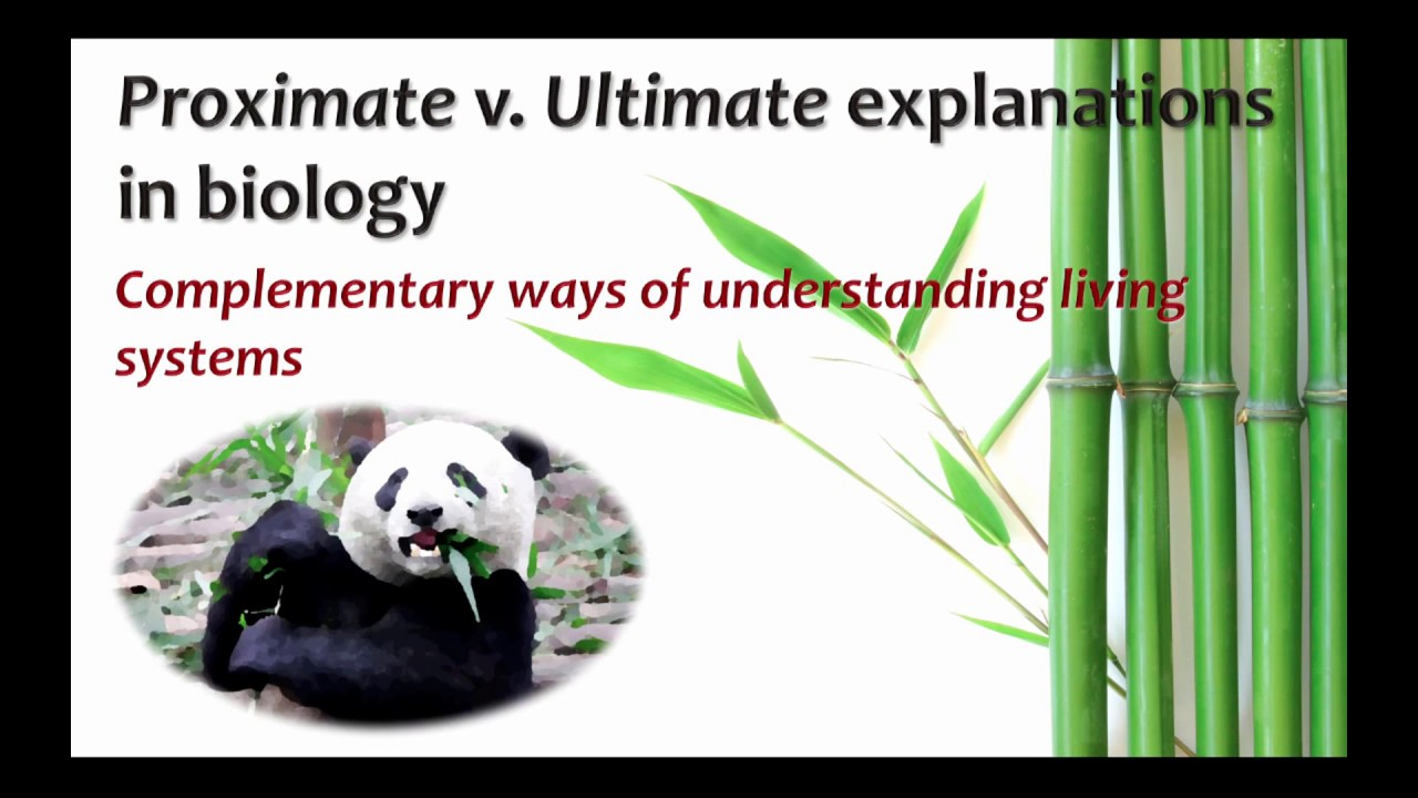 1. What is the difference between proximate and ultimate causes of.