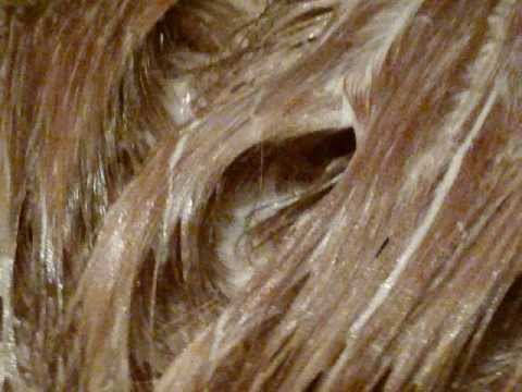 Vidal sassoon hair color light blonde review demo for 2 blond salon reviews