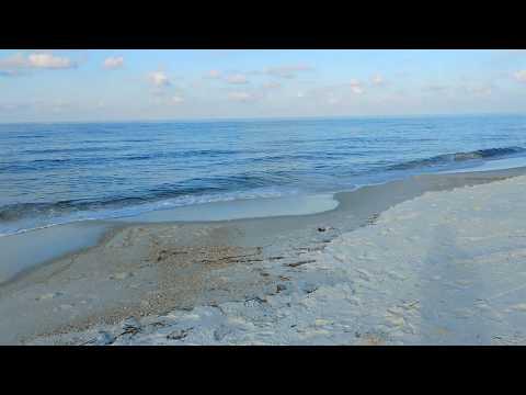 Red Tide Panama City Beach FL Sept 18 beach location 7505 Thomas dr