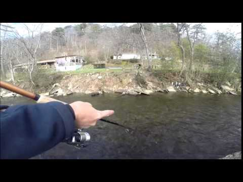 Trout fishing cherokee nc youtube for Nc trout fishing regulations