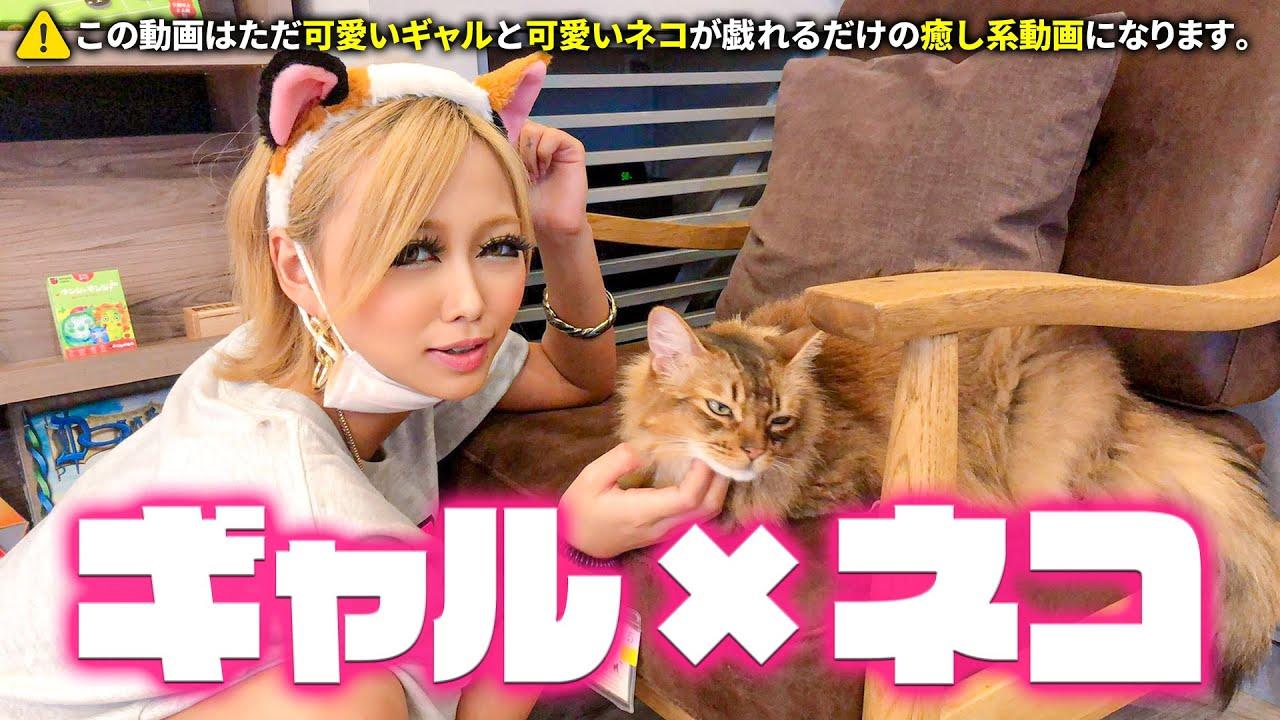 【今日のにゃんこ】ギャルが猫カフェハシゴしてみた♡食いしん坊猫ちゃんに癒されまくり旅♡