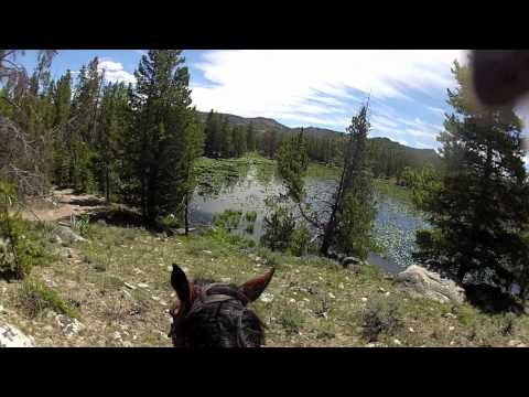 Horse riding across Wyoming National Park 2012 (Bon Iver-Holocene )