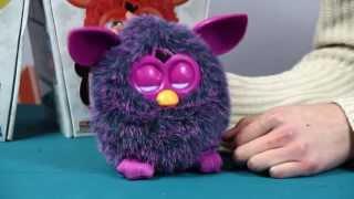 Prezentacja po polsku: Voodoo - Furby Hot - Furby Violett / Furby Fioletowy - Hasbro