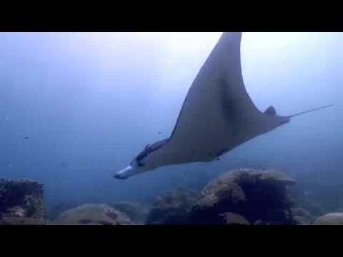 Micronesia '09