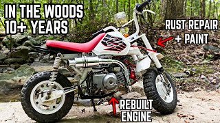 1999 Honda Z50R Restoration | Abandoned for 10+ Years, Cleaned, Painted, & Big Bored!