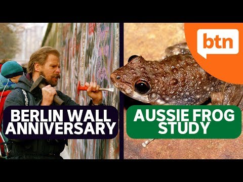 Berlin Wall 30 Year Anniversary, Frog ID week and Collecting Old Fingernails! - Today's Biggest News