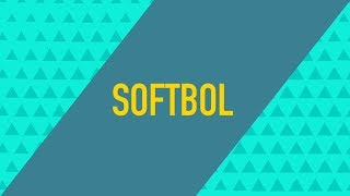 SOFTBOL NEWS (Bloco 03) │ LIVE do #CasalTravinha (30/08/2018)