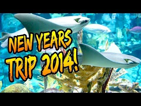 NEW YEARS EVE TRIP - Chicago Shedd Aquarium!