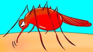 Sivrisinekler Diğer Kişilerden Çok Sizi Isırıyorsa İşte Nedeni